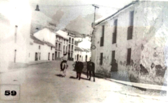 Lucena | Blog de Arcángel Bedmar